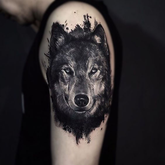 Волк. Плечо