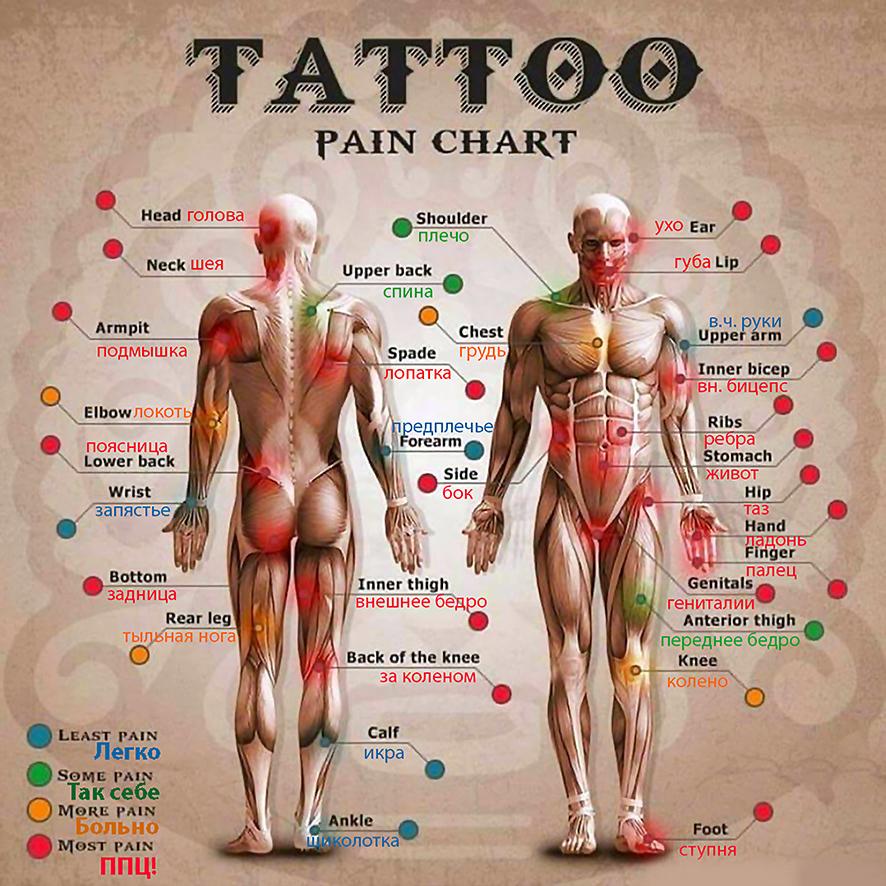 Схема болевых зон по степеням боли