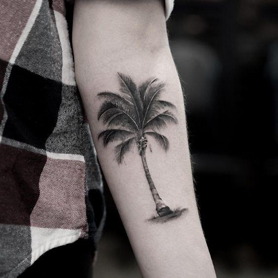 Тату пальма на предплечье руки мужчины