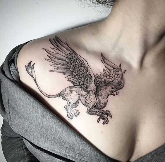 Тату грифон у девушки на правой стороне груди
