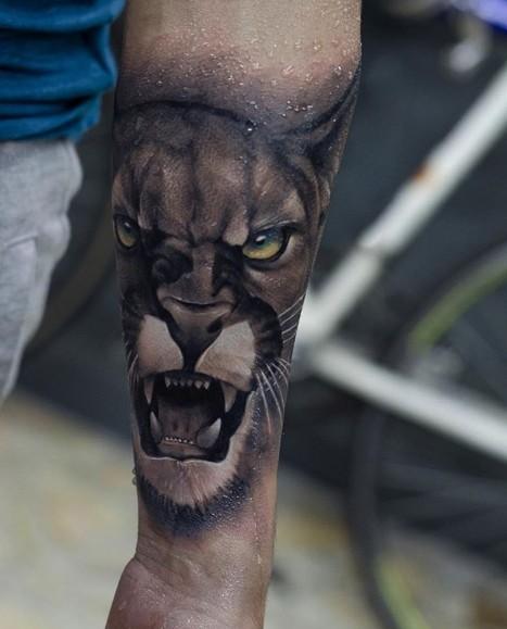 отвечает егорычев, картинки татуировок пума город веревочный парк