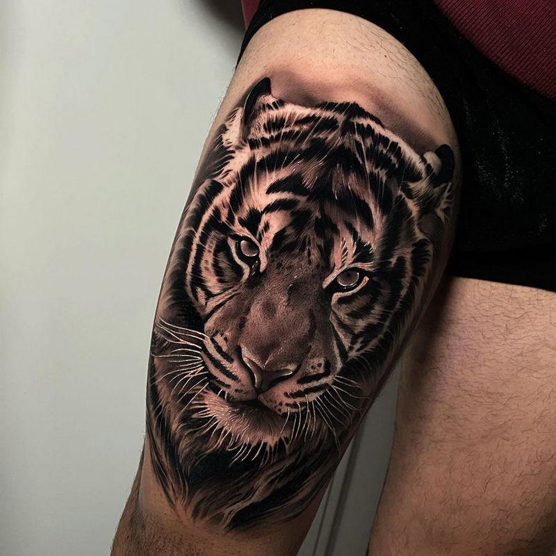 Тигр. Бедро